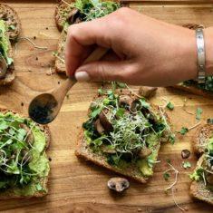 Avocado Toast with Mushrooms
